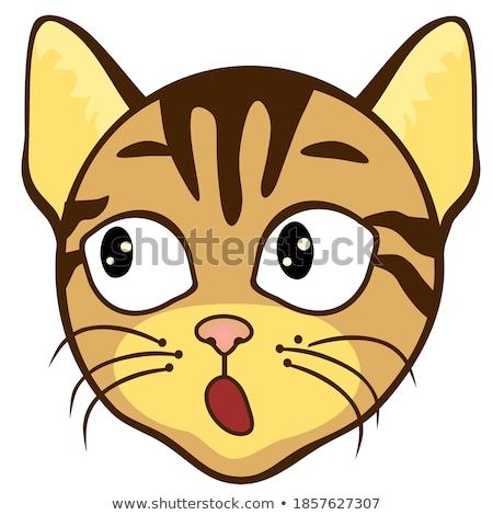 pop · funny · cute · emoticon · ilustración · cara - foto stock © Blue_daemon