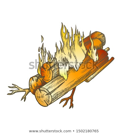 Traditional Burning Timbered Stick Color Vintage Vector Stock photo © pikepicture