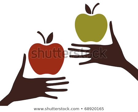 Retail of Fruit, Picking Apples, Business Vector Stock photo © robuart
