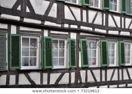 Historical Houses in Tubingen, Germany Stock photo © borisb17
