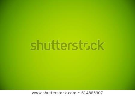Keret sablon zöld illusztráció terv háttér Stock fotó © bluering