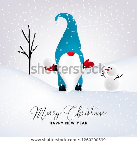 Piękna projektu snowman gnom christmas Zdjęcia stock © balasoiu