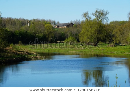 Rivier Letland kasteel heuvel gras Stockfoto © borisb17
