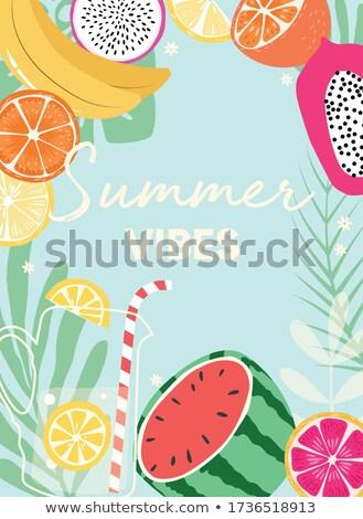 フルーツ デザイン 夏 タイポグラフィ スローガン 新鮮果物 ストックフォト © BlueLela