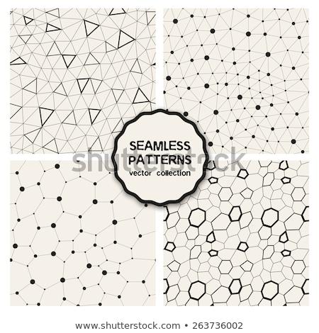 Vector seamless geometric pattern. Contemporary stylish tiles. Polygonal linear grid. Stock photo © samolevsky