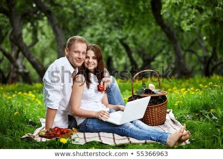 молодые счастливым улыбаясь пару ноутбука пикника Сток-фото © HASLOO
