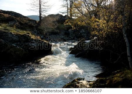 воды пейзаж водопада Шотландии потока природного Сток-фото © HJpix
