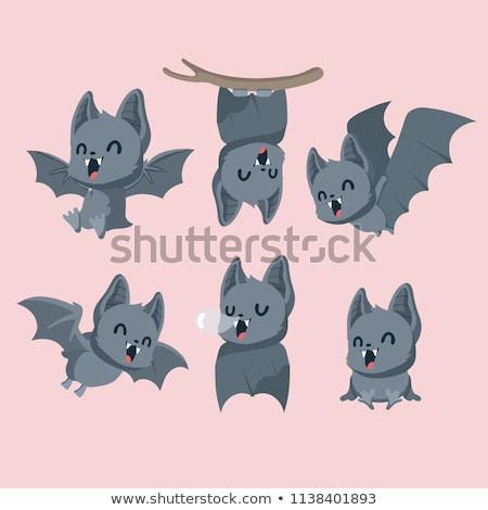 Cute Cartoon Bat Stock photo © indiwarm