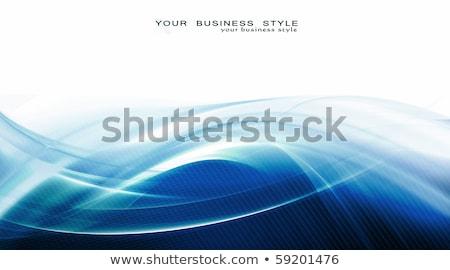 Nice дизайна искусства элемент Сток-фото © Designus
