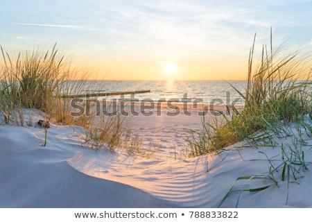 Paysages Pologne coucher du soleil mer baltique industrielle pollution Photo stock © linfernum