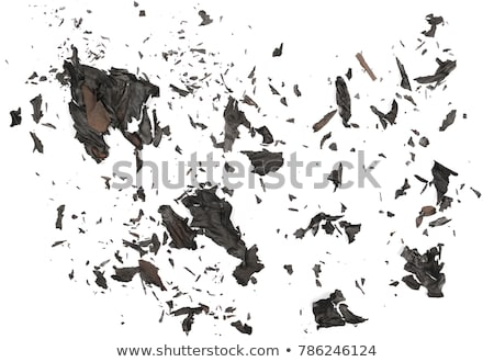 A piece of burnt paper Stock photo © a2bb5s