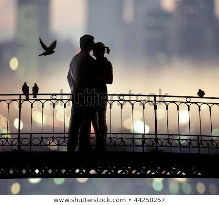 bridge of sweethearts Stock photo © ssuaphoto