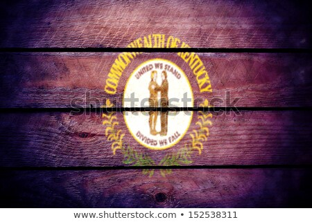 Vlag Californië grunge houten textuur nauwkeurig Stockfoto © vepar5
