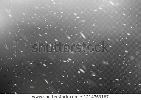 Hóvihar sí út fa erdő hegy Stock fotó © RuslanOmega