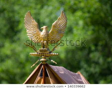 Altın Roma kartal simge kullanılmış Stok fotoğraf © SecretSilent