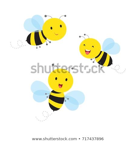 busy bees Stock photo © jayfish