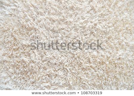 Novo bege tapete textura brilhante Foto stock © stevanovicigor