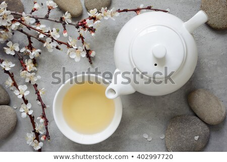 japanese green tea and sakura branch stock photo © karandaev
