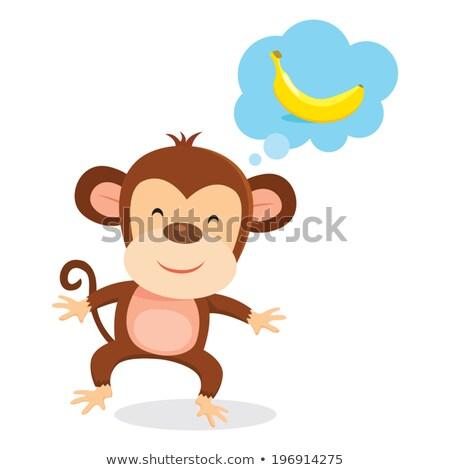 Cartoon обезьяны мысли пузырь стороны дизайна искусства Сток-фото © lineartestpilot