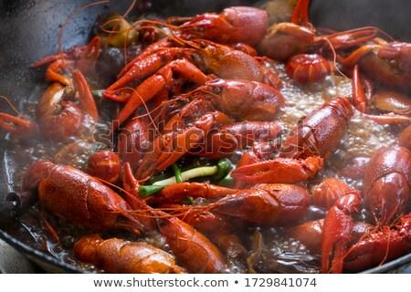 Red crayfish stock photo © Yuran
