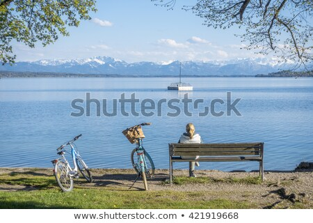 trees lake tutzing stock photo © w20er