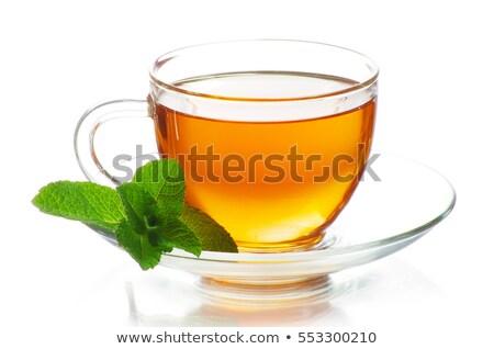 стекла мята листьев чай служивший Сток-фото © justinb
