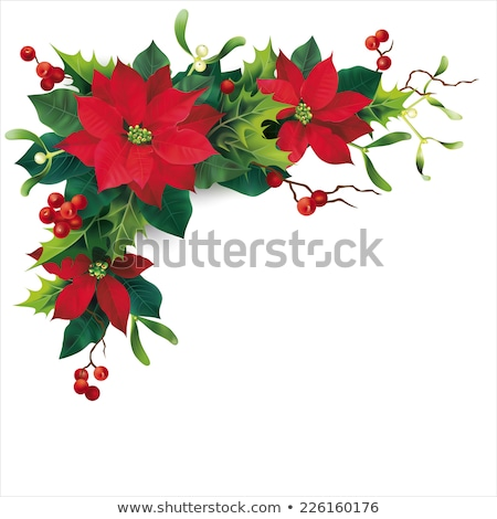 christmas border white poinsettias elegant stock photo © irisangel