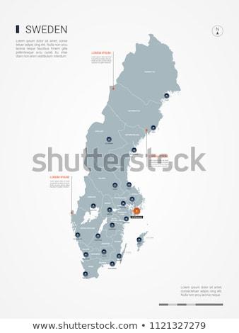Narancs gomb kép térképek Svédország űrlap Stock fotó © mayboro