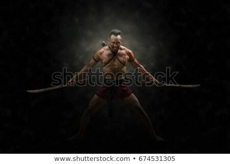 Sword in two hands Stock photo © Hofmeester