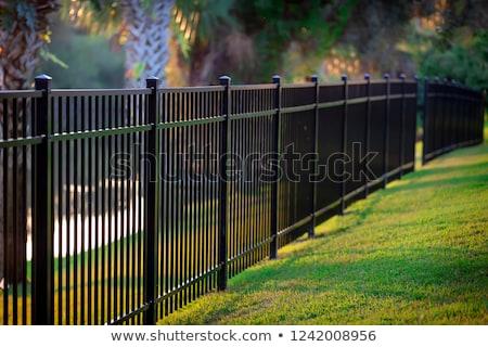 Metal ogrodzenia chrom zielona trawa selektywne focus bezpieczeństwa Zdjęcia stock © simazoran