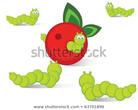 Foto stock: Green Caterpillar Creeps On Red Apple