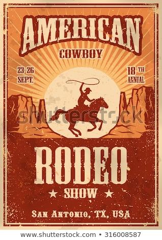 rodeio · cartaz · Texas · EUA · bandeira · projeto - foto stock © mcherevan