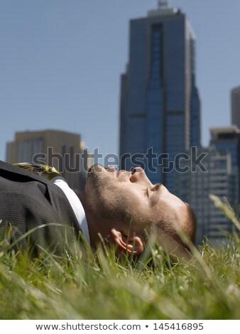 zakenman · weide · hemel · gras · zomer · groene - stockfoto © paha_l