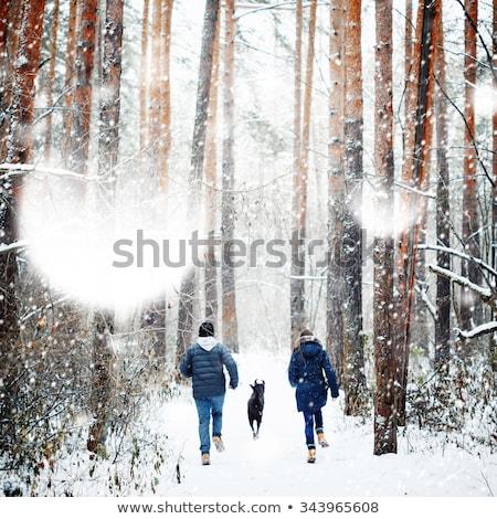 familie · lopen · winter · jonge · hond · bos - stockfoto © dariazu