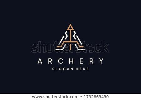 Vector Flat Design Archery Bow with Arrow Icon Stock photo © Anna_leni
