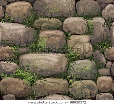 Taş duvar kapalı bitkiler güneş ağaç bahar Stok fotoğraf © Klinker