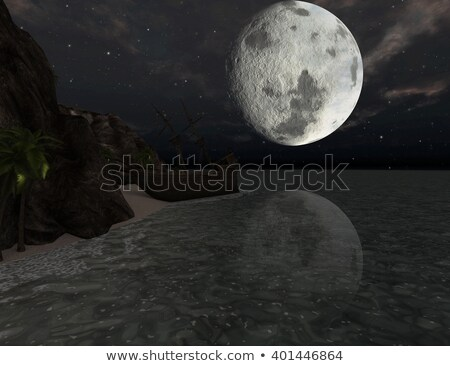 Shipwreck on a tropical island at moonlight Stock photo © ankarb