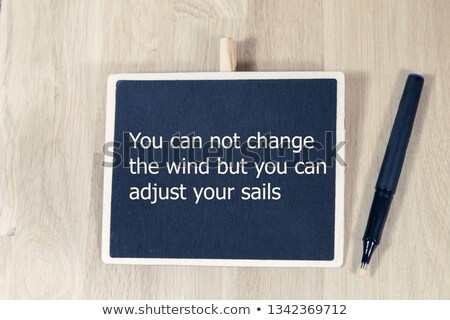 You can not change the wind Quote Stock photo © ivelin