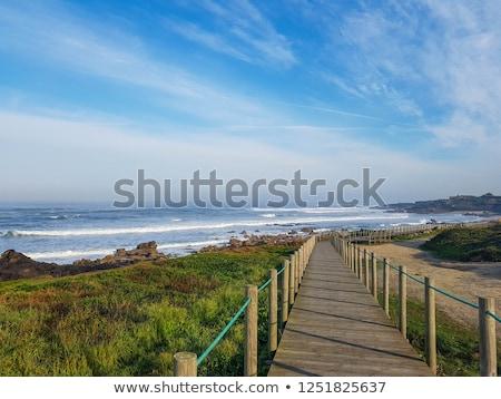 Kék vad óceán part víz kövek Stock fotó © compuinfoto