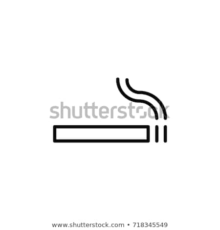 Cigarettes in line isolated Stock photo © berczy04