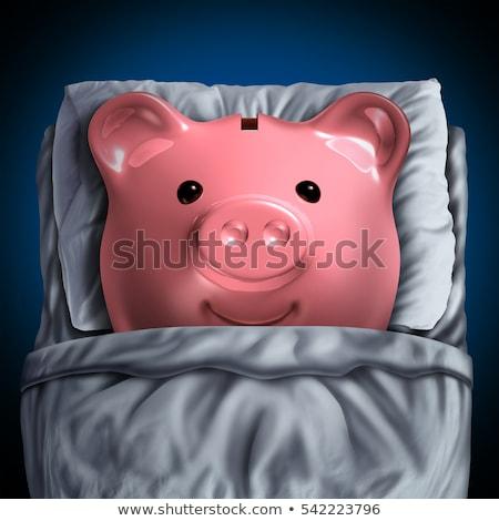 Spaargeld rekening bancaire symbool spaarvarken Stockfoto © Lightsource