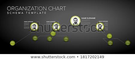 Bedrijf beheer hiërarchie schema sjabloon dun Stockfoto © orson