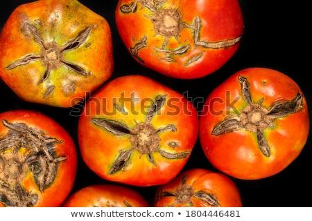 Kuraklık bahçe sonuçları sebze küresel isınma doğa Stok fotoğraf © Kidza