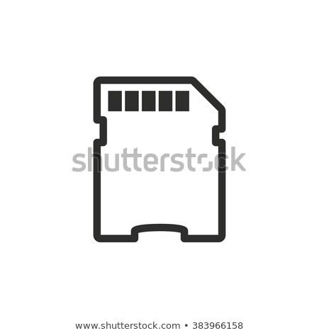 memória · cartão · vetor · proteger · digital · flash - foto stock © angelp