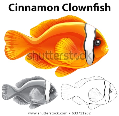 Doodle character for cinnamon clownfish Stock photo © bluering