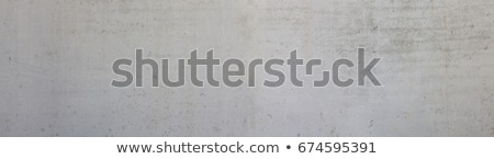 Fresh Segmented Concrete Background Stock photo © limbi007