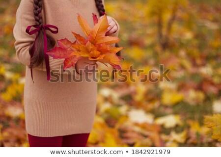 Bambina foglia d'acero mano autunno giorno sorriso Foto d'archivio © boggy