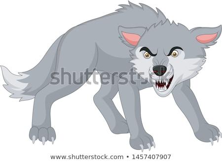 Сток-фото: волка · лице · Cute · животного · талисман