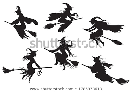 Silhouette Witch and Cat Flying On Broomstick Stock photo © Krisdog
