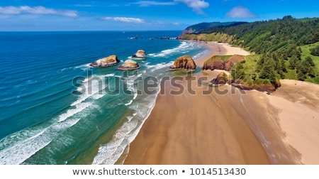 Cannon Beach on the Oregon Coast Stock photo © davidgn